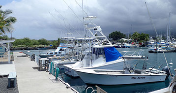 Charter Fishing Business